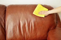 How To Care Your Leather Sofa