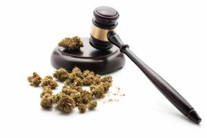 How To Stay On The Right Side Of The Law While Enjoying Legal Marijuana