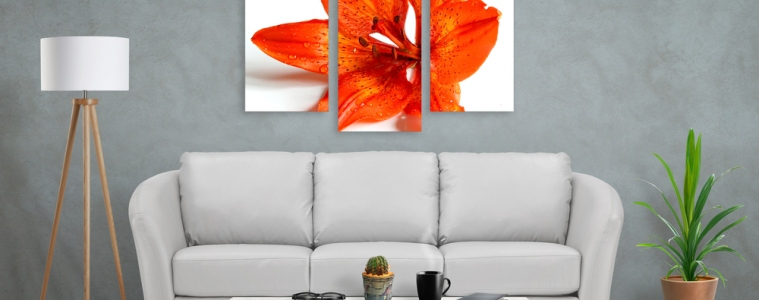 6 Reasons Canvas Printing Is The Best Choice For Your Walls